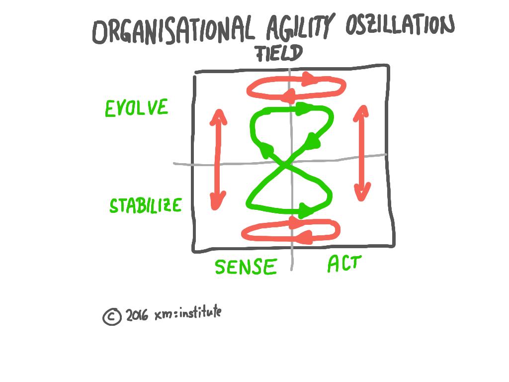 Agile Organisation - Oszillation Field